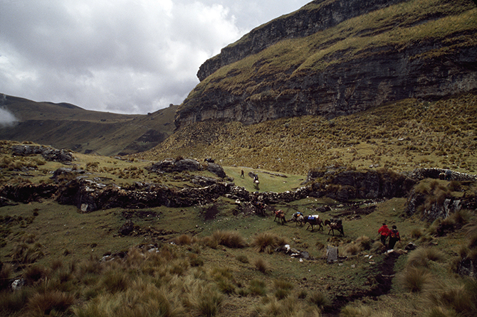 Low lying stone walls once lined the Inca highway to Ecuador, La Libertad Region, Peru. Photo: Getty Images