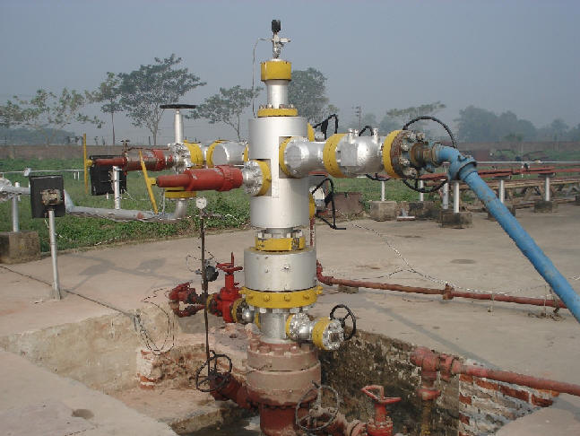 A well of Titas Gas Field. Photo taken from BGFCL website