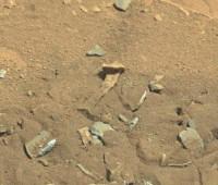 'Alien thigh bone' seen on Mars?