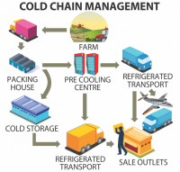 Cold chain can save food supply chain