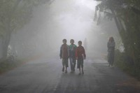Fog disrupts transport