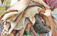 Eid Bounty For Leather Sector