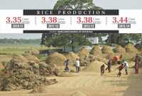 Rice output hits a record high