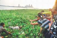 Narayanganj 7-murder: Ex-Rab man on fresh remand